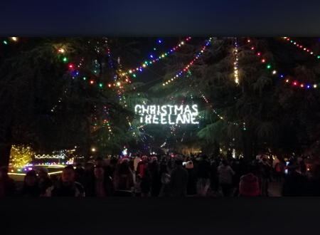 Christmas Tree Lane Fresno.Christmas Tree Lane Opens For 96th Time